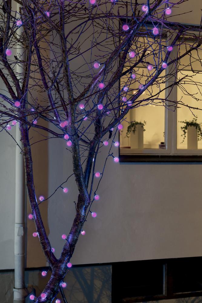 Gekleurde kerstverlichting