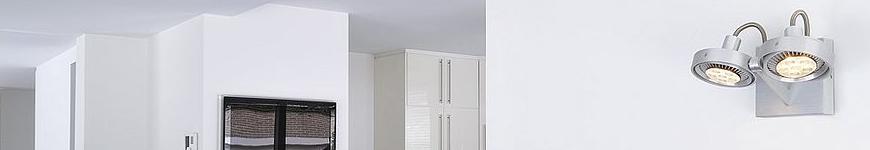 plafondspots ar111 slv