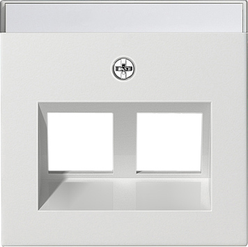 GIRA inzetplaat computeraansluitng 2xRJ45 30GR zuiver wit glanzend 264003